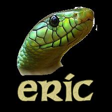 eric ide python